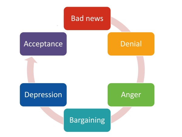 cycle of acceptance